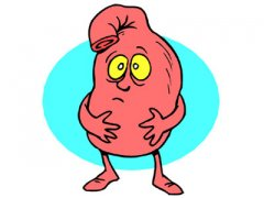 胃酸过多的原因 胃粘膜壁细胞长期遭受刺激