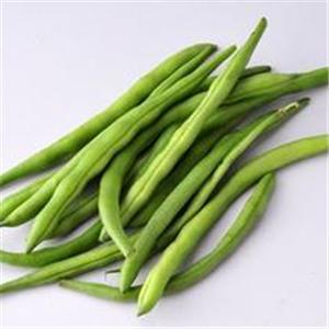 四季豆的营养价值