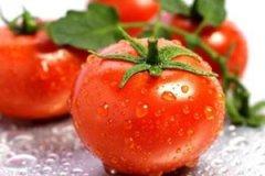 怎么选购西红柿 怎么辨别催熟西红柿