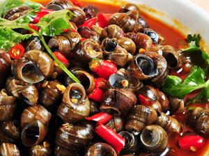 田螺的营养价值 田螺的营养价值有哪些