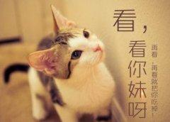 中国部分地名的由来(二)